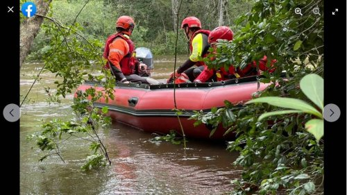 Kayaker gets stuck in tree after flipping in flooded creek, Mississippi officials say