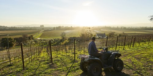 Sunset Wine Issue 2021 Is Out—and Free to Read - Sunset Magazine