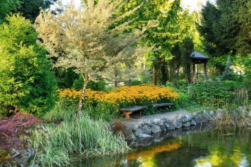 August Garden Ideas in the West - Sunset Magazine