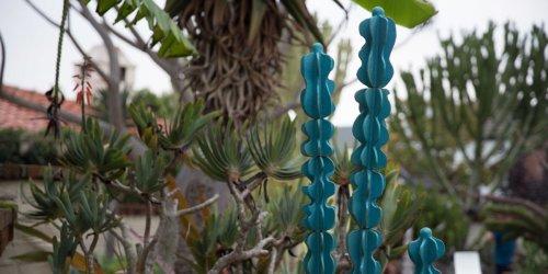 Dustin Gimbel's Ceramic Cactus Will Live in Your Garden Forever - Sunset Magazine