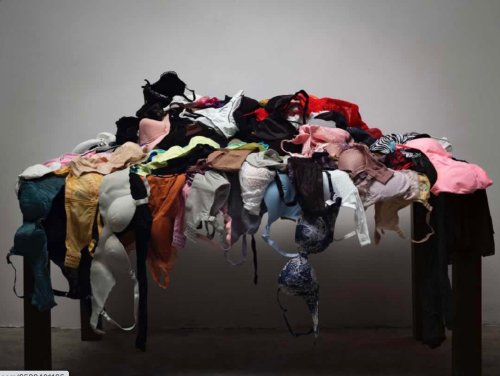 Perverted or provocative? Installation by fake panty thief pulled from Chinese art contest