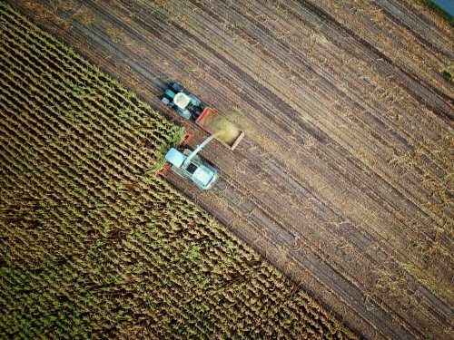 How Technology and Capital Can Help Accelerate Agricultural Innovation in China