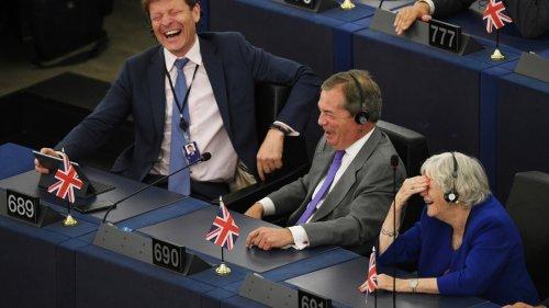 Le pari hasardeux de multimillionnaires opposés à l'UE