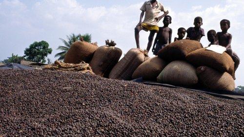 Warum nicht alle Kinderarbeit komplett verbieten wollen