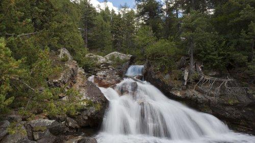 Les sources et les forêts, grandes gagnantes de l'été humide