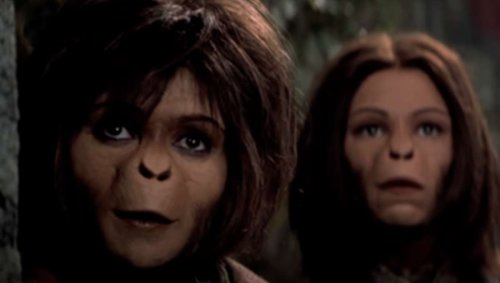 Could apes build a society in 3,000 years? The science behind Planet of the Apes