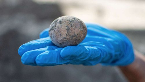 Anyone for an ancient omelette? Archaeologists discover rare intact 1,000-year-old chicken egg