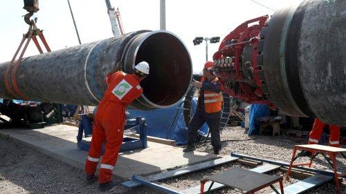 Nord Stream 2   Umweltbundesamt-Präsident: Gaspipeline könnte Dinosaurier werden