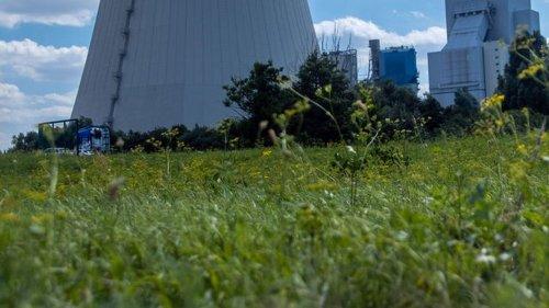 Kohlekraftwerk Rosotock: Grüne und Linke für Aus bis 2025