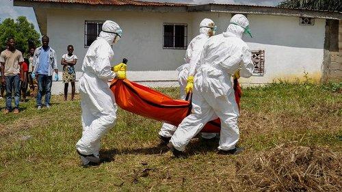 Westafrika: Neuer Ebola-Ausbruch in Guinea - Behörden verfolgen Kontakte