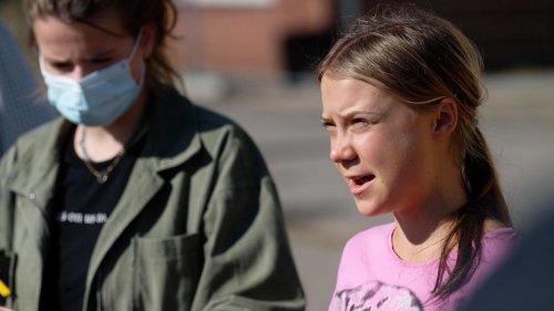 Greta Thunberg und Luisa Neubauer rufen zu weiteren Klimaprotesten auf
