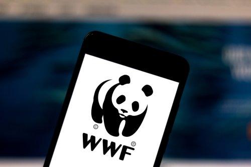 WWF will mit virtueller Krypto-Kunst bedrohte Tierarten retten