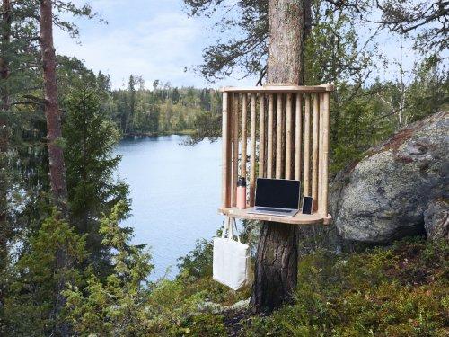 Kein Strom, keine Toilette, dafür Elche: In Finnland kannst du mitten im Wald arbeiten
