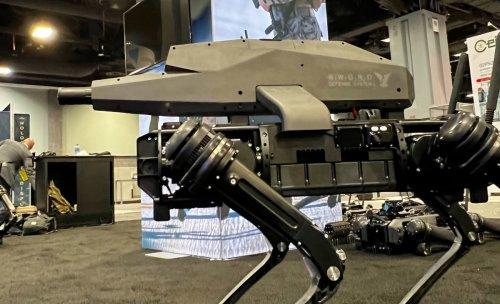 """""""Grenze überschritten"""": Rüstungsunternehmen setzt Maschinengewehr auf Robo-Hund"""