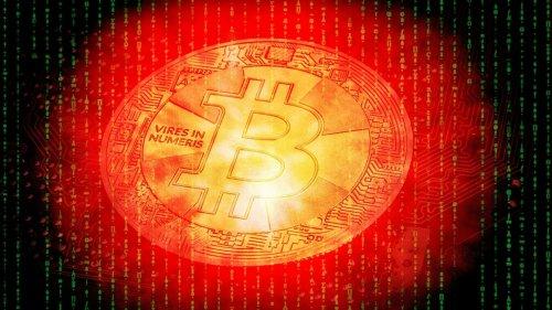 """Stärkere Regulierung würde Bitcoin beflügeln – meint der """"Wolf of Wall Street"""""""