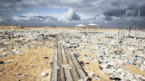 Vor allem To-Go-Plastik vermüllt die Meere