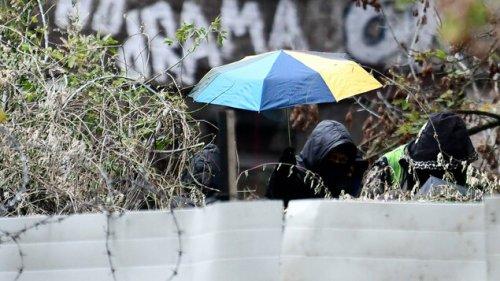 Frauen verharren auf Seilen zwischen Bäumen – bis zum Mittag 21 Festnahmen