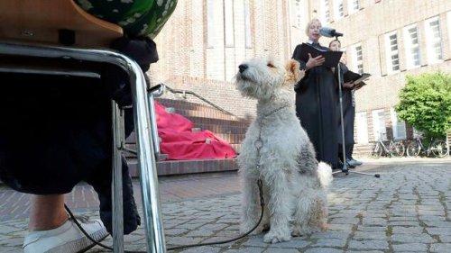So wurde der erste Tiergottesdienst in Berlin-Wilmersdorf gefeiert