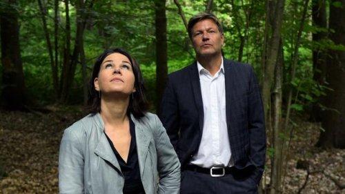 Im Brandenburger Moor finden sie wieder zueinander