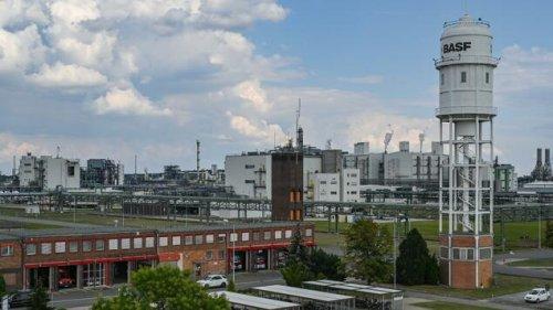 BASF will mit Porsche in Schwarzheide kooperieren