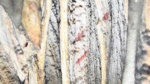 Neandertaler malten schon vor 65.000 Jahren