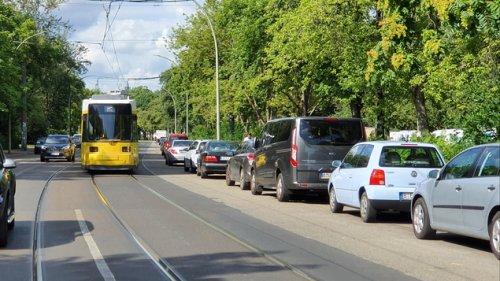 Für die Straßenbahn sollen im Osten Berlins 40 alte Bäume fallen