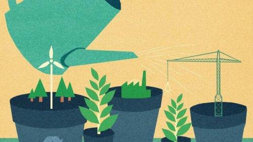 Immer mehr Unternehmen müssen eigene Nachhaltigkeitsberichte ablegen