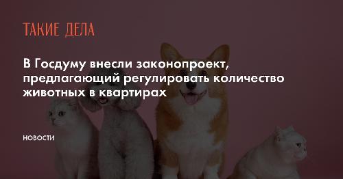 В Госдуму внесли законопроект, предлагающий регулировать количество животных в квартирах