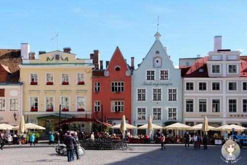 AIDA Ostsee Reise • Zu Besuch in Tallinn