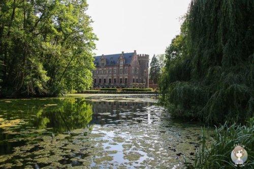 Schloss Paffendorf: Romantisches Ausflugsziel im Rhein-Erft-Kreis