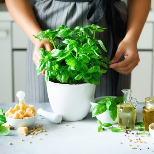 10 Herbs Practically Anyone Can Grow Indoors