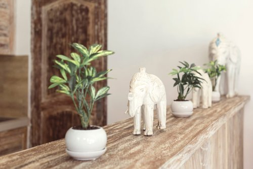 If You See an Elephant Statue at Your Neighbor's Front Door, This Is What It Means