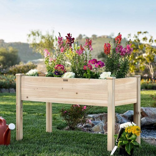 The Best Tips to Help You Grow a Raised Bed Garden