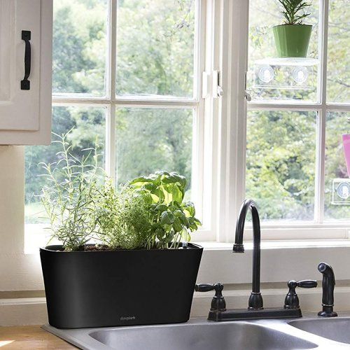 10 Charming Planters That Make It Easy to Grow an Indoor Herb Garden