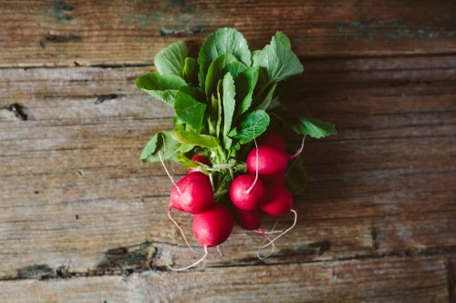 The Fastest Growing Veggies for Your Garden