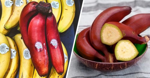 If You See a Red Banana, This Is What It Means
