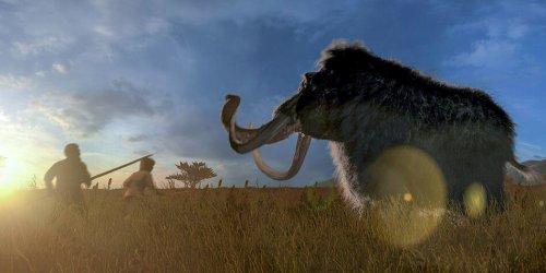 Das Lindner-Mammut