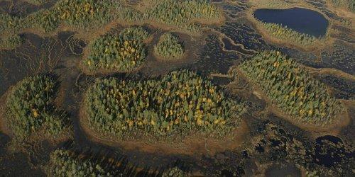 Finnland zerstört CO2-Speicher