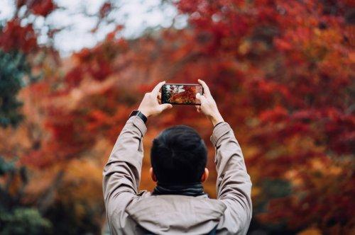 Die 14 besten Kamera-Smartphones