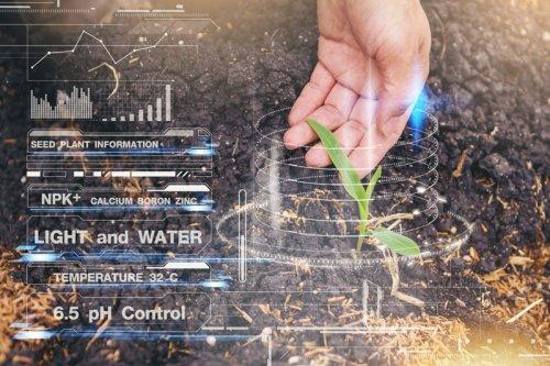 Jardin connecté : les dernières technologies pour avoir la main verte