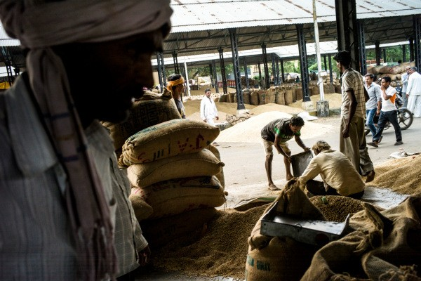Arya raises $21M to provide farmers in India finance and post-harvest services