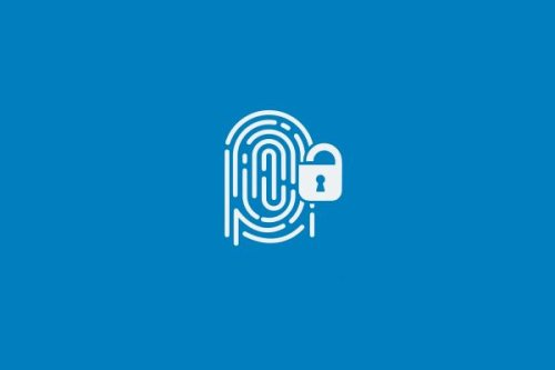 Cybersecurity 101: Why you need to use a password manager