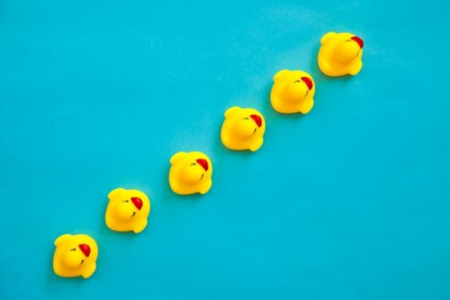 Before an exit, founders must get their employment law ducks in a row