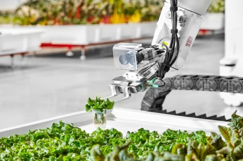 Iron Ox raises $20 million for its robotic farms