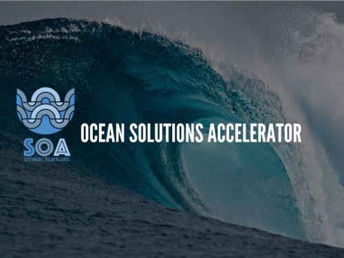 海を護る非営利アクセラレーターOcean Solutions Acceleratorが最初の育成候補5社を選定