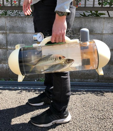 A Clear Cylindrical Capsule for Carrying Live Fish