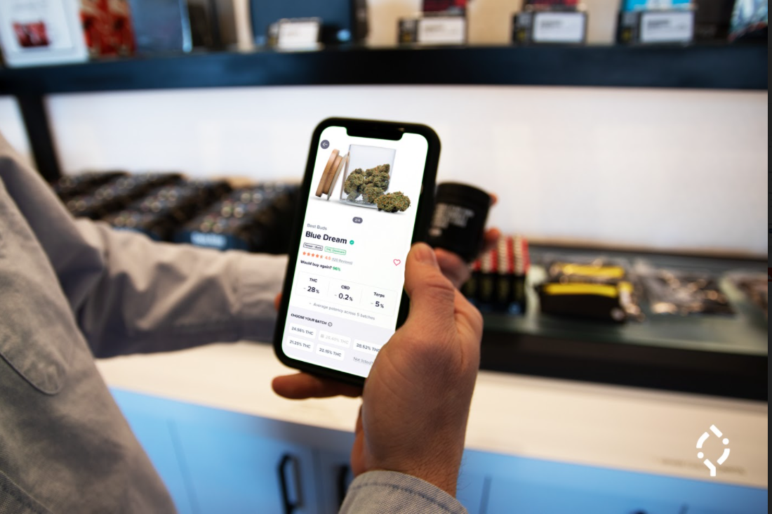 Meet Trackwell, the cannabis discovery startup led by Mike Brenner - Technical.ly Baltimore