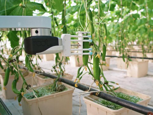 Future of farming: AI-enabled harvest robot flexes new dexterity skills
