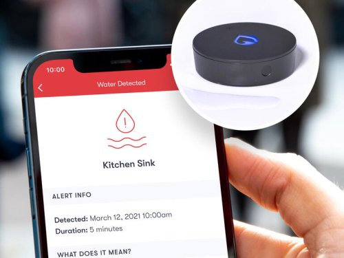 Smart home sensor looks like an Echo Dot but watches for leaky pipes