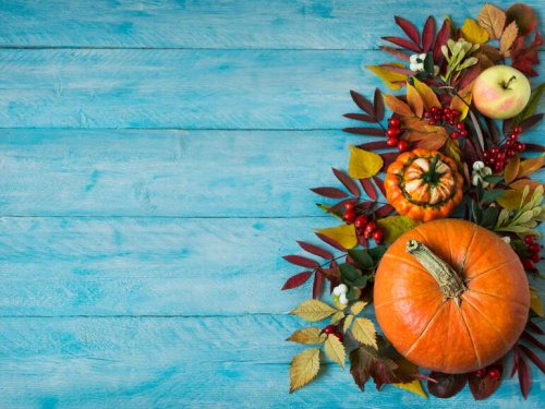 Photos: Thanksgiving Zoom backgrounds to boost the virtual festivities from afar